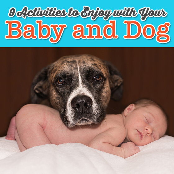 9 ACTIVITIES TO ENJOY WITH YOUR BABY AND DOG 1 Daily Mom Parents Portal