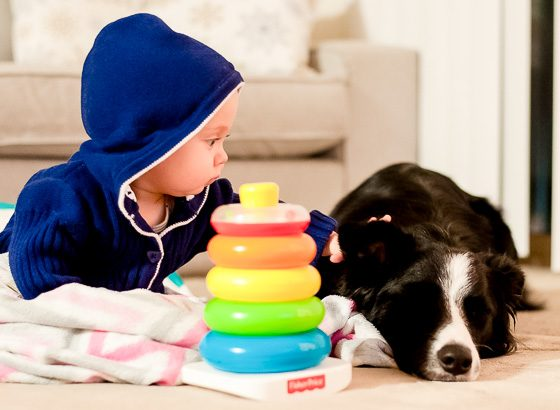 9 ACTIVITIES TO ENJOY WITH YOUR BABY AND DOG 3 Daily Mom Parents Portal
