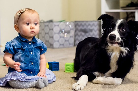 9 ACTIVITIES TO ENJOY WITH YOUR BABY AND DOG 5 Daily Mom Parents Portal