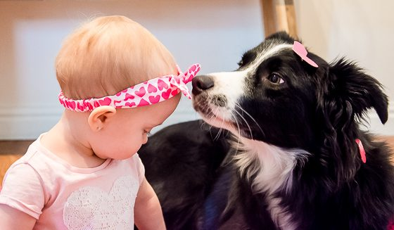 9 ACTIVITIES TO ENJOY WITH YOUR BABY AND DOG 4 Daily Mom Parents Portal