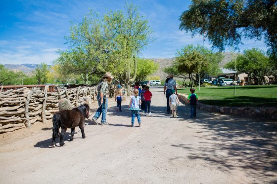 The Daily Mom Travel Diary: Our 3 Days at the Best Dude Ranch in Arizona 8 Daily Mom Parents Portal