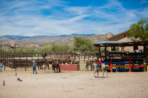 Kid Friendly Places to Stay & Dine While Road-Tripping through Arizona 3 Daily Mom Parents Portal