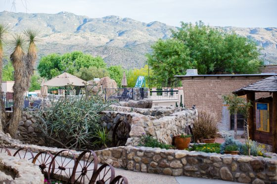 Kid Friendly Places to Stay & Dine While Road-Tripping through Arizona 5 Daily Mom Parents Portal
