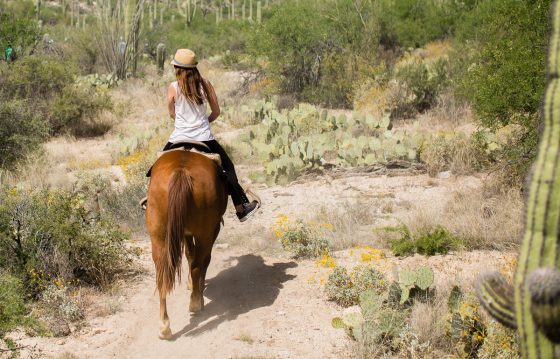 The Daily Mom Travel Diary: Our 3 Days at the Best Dude Ranch in Arizona 30 Daily Mom Parents Portal