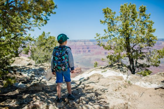 The Bucket List for a Family Friendly Vacation through Arizona 32 Daily Mom Parents Portal