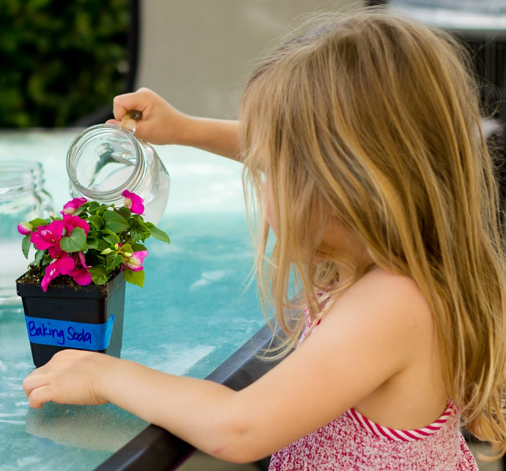 Exploring the World with Science: A Water Pollution Experiment 4 Daily Mom Parents Portal