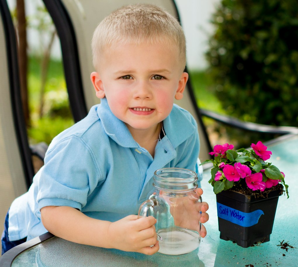 Exploring the World with Science: A Water Pollution Experiment 6 Daily Mom Parents Portal