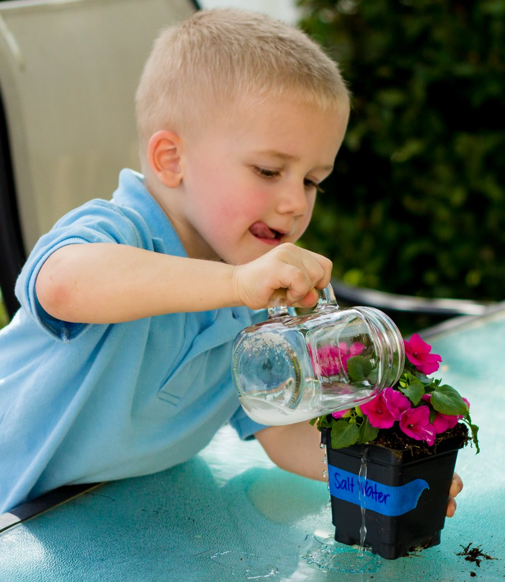 Exploring the World with Science: A Water Pollution Experiment 5 Daily Mom Parents Portal