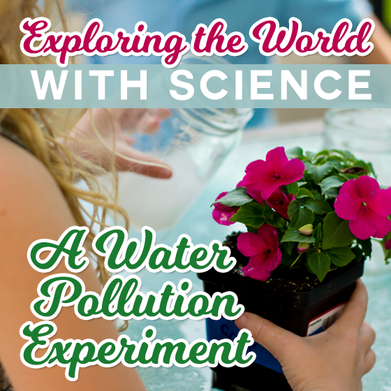 Exploring the World with Science: A Water Pollution Experiment 1 Daily Mom Parents Portal