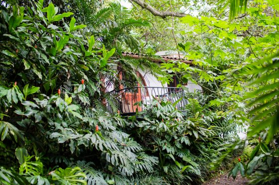 Top 3 Places to Stay While Traveling through Costa Rica 2 Daily Mom Parents Portal