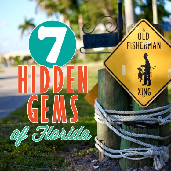 7 Hidden Gems in Florida You Did Not Know Were Fun 31 Daily Mom Parents Portal