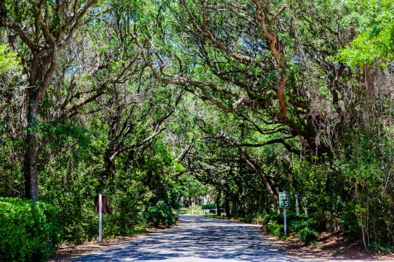 7 Hidden Gems in Florida You Did Not Know Were Fun 26 Daily Mom Parents Portal