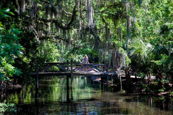 7 Hidden Gems in Florida You Did Not Know Were Fun 28 Daily Mom Parents Portal