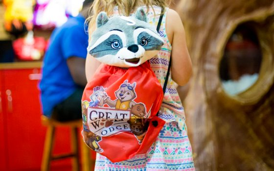 Tackling Great Wolf Lodge Kansas City like a (Mom)Boss 15 Daily Mom Parents Portal