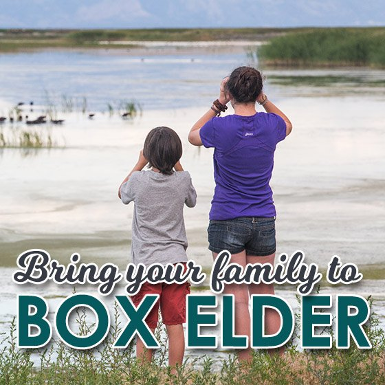 Bring Your Family to Box Elder, Utah 21 Daily Mom Parents Portal