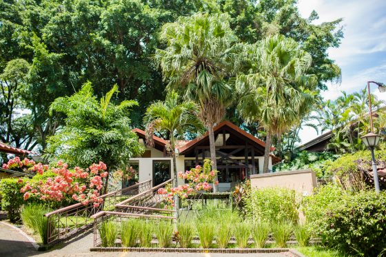 Top 3 Places to Stay While Traveling through Costa Rica 50 Daily Mom Parents Portal
