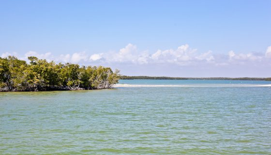 7 Hidden Gems in Florida You Did Not Know Were Fun 10 Daily Mom Parents Portal