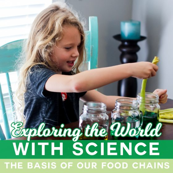 Exploring the World With Science: The Basis of Our Food Chains 1 Daily Mom Parents Portal