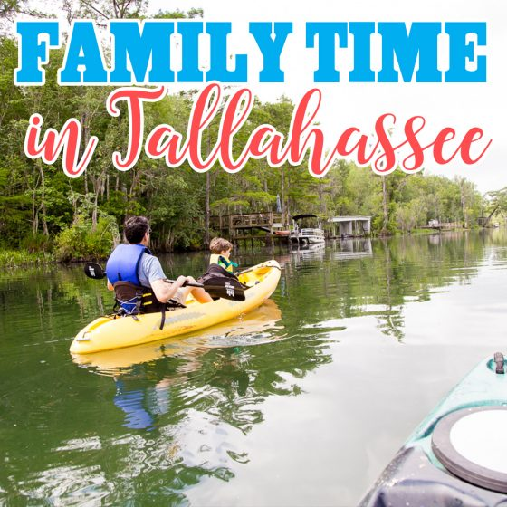 Family Time in Tallahassee 72 Daily Mom Parents Portal