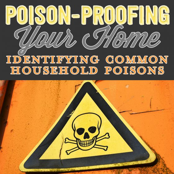 Poison Proofing Your Home: Identifying Common Household Poisons 1 Daily Mom Parents Portal