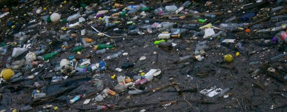 Plastic Oceans: The Epidemic That is Ruining Our Oceans 3 Daily Mom Parents Portal