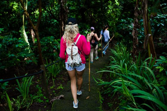 5 Best Eco-Excursions to Experience While in Costa Rica 36 Daily Mom Parents Portal