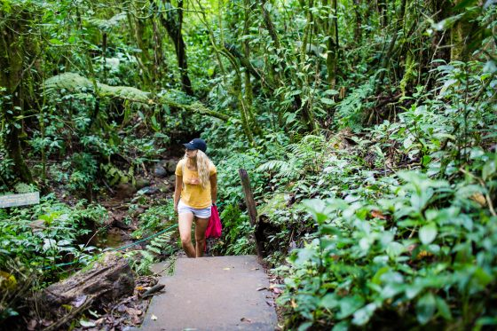 5 Best Eco-Excursions to Experience While in Costa Rica 10 Daily Mom Parents Portal
