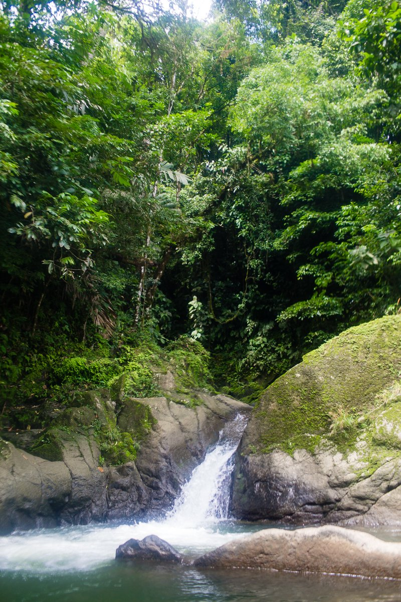 5 Best Eco-Excursions to Experience While in Costa Rica 42 Daily Mom Parents Portal