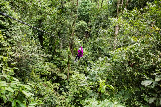 5 Best Eco-Excursions to Experience While in Costa Rica 27 Daily Mom Parents Portal
