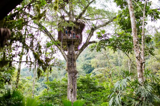 5 Best Eco-Excursions to Experience While in Costa Rica 31 Daily Mom Parents Portal