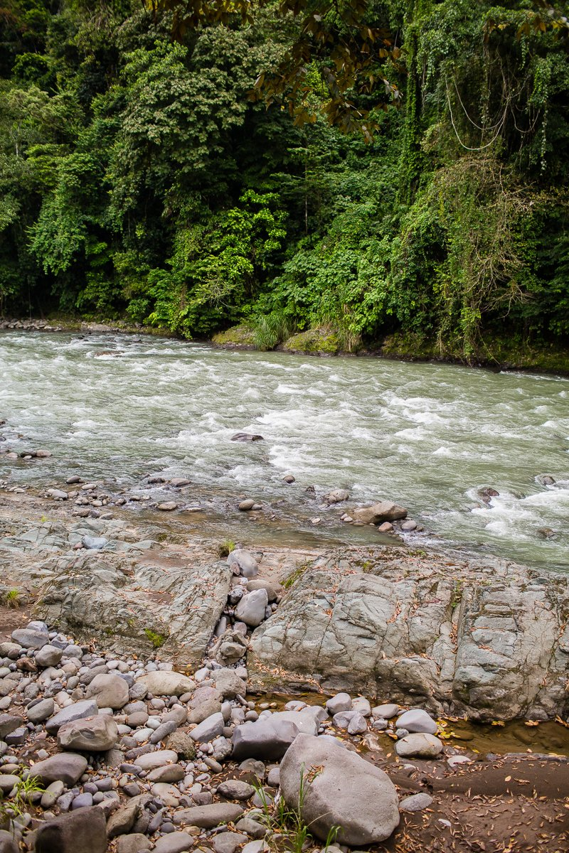 5 Best Eco-Excursions to Experience While in Costa Rica 44 Daily Mom Parents Portal