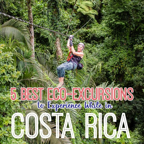 5 Best Eco-Excursions to Experience While in Costa Rica 51 Daily Mom Parents Portal