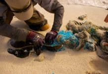 Plastic Oceans: The Epidemic That Is Ruining Our Oceans
