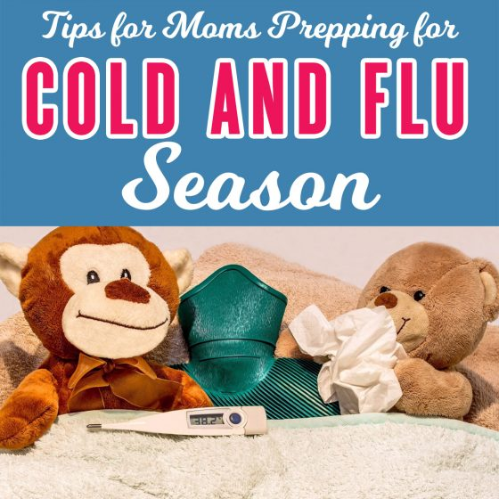 Tips for Prepping Your House for Cold and Flu Season 5 Daily Mom Parents Portal