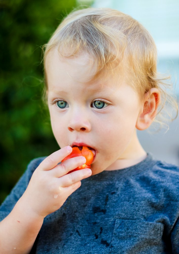 All You Need to Know About a Vegetarian Child 3 Daily Mom Parents Portal