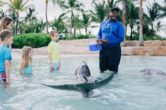 QUICK GUIDE TO FAMILY FRIENDLY NASSAU, BAHAMAS 32 Daily Mom Parents Portal