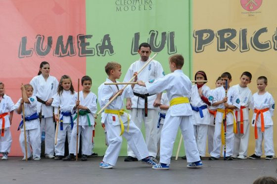 The Benefit of Karate For Kids 2 Daily Mom Parents Portal