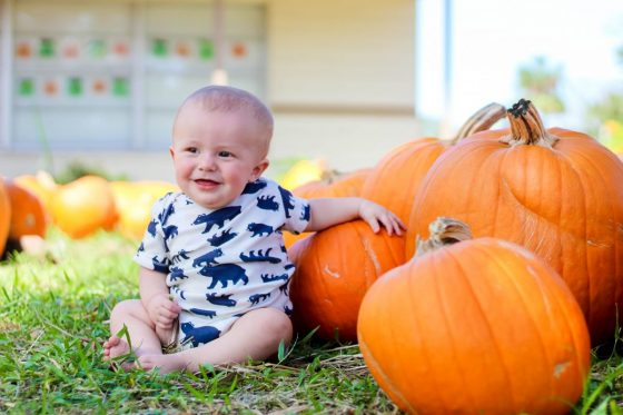 8 Fall Activities To Do With A New Baby 2 Daily Mom Parents Portal
