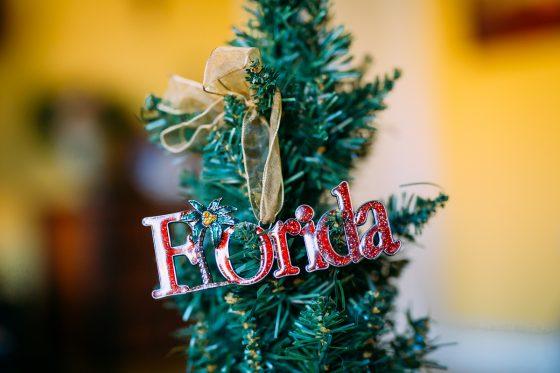 Holiday Decor, Florida Style 2 Daily Mom Parents Portal