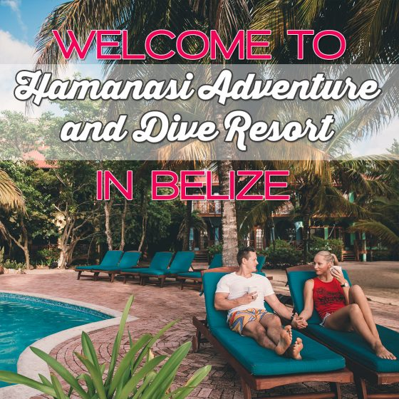 Welcome to Hamanasi Adventure and Dive Resort in Belize 1 Daily Mom Parents Portal
