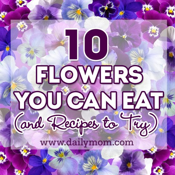 10 Edible Flowers and Recipes You Can Try 1 Daily Mom Parents Portal
