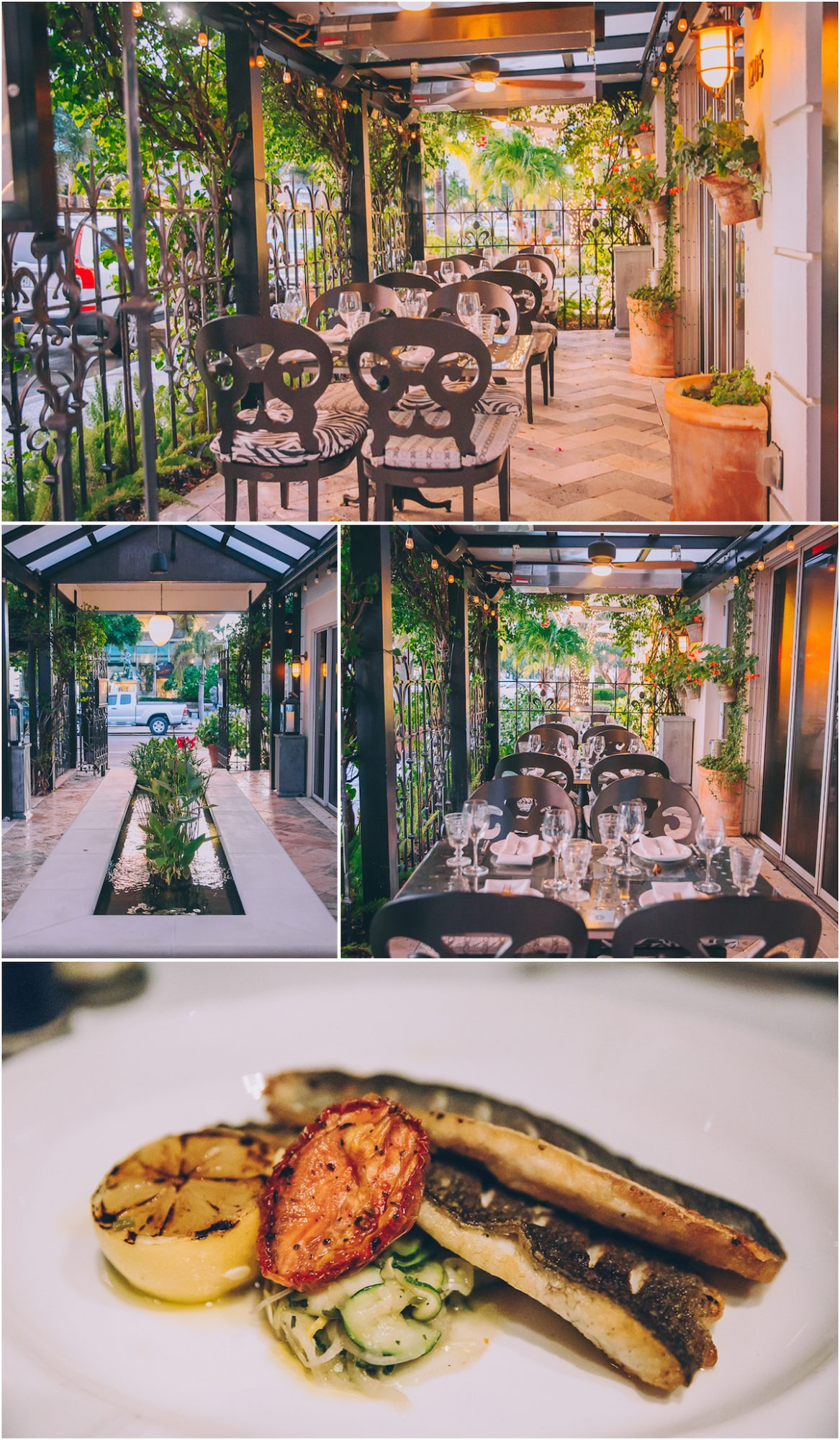 6 Best Restaurants In Naples Florida Local Travel Daily Mom