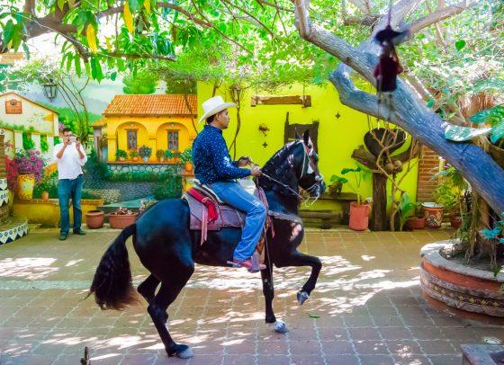 el-maison-restaurant-mazatlan-mexico (2)