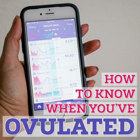 how to know when you've ovulated