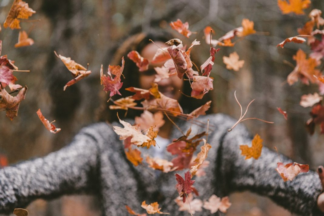 7 Health Boosting Fall Activities