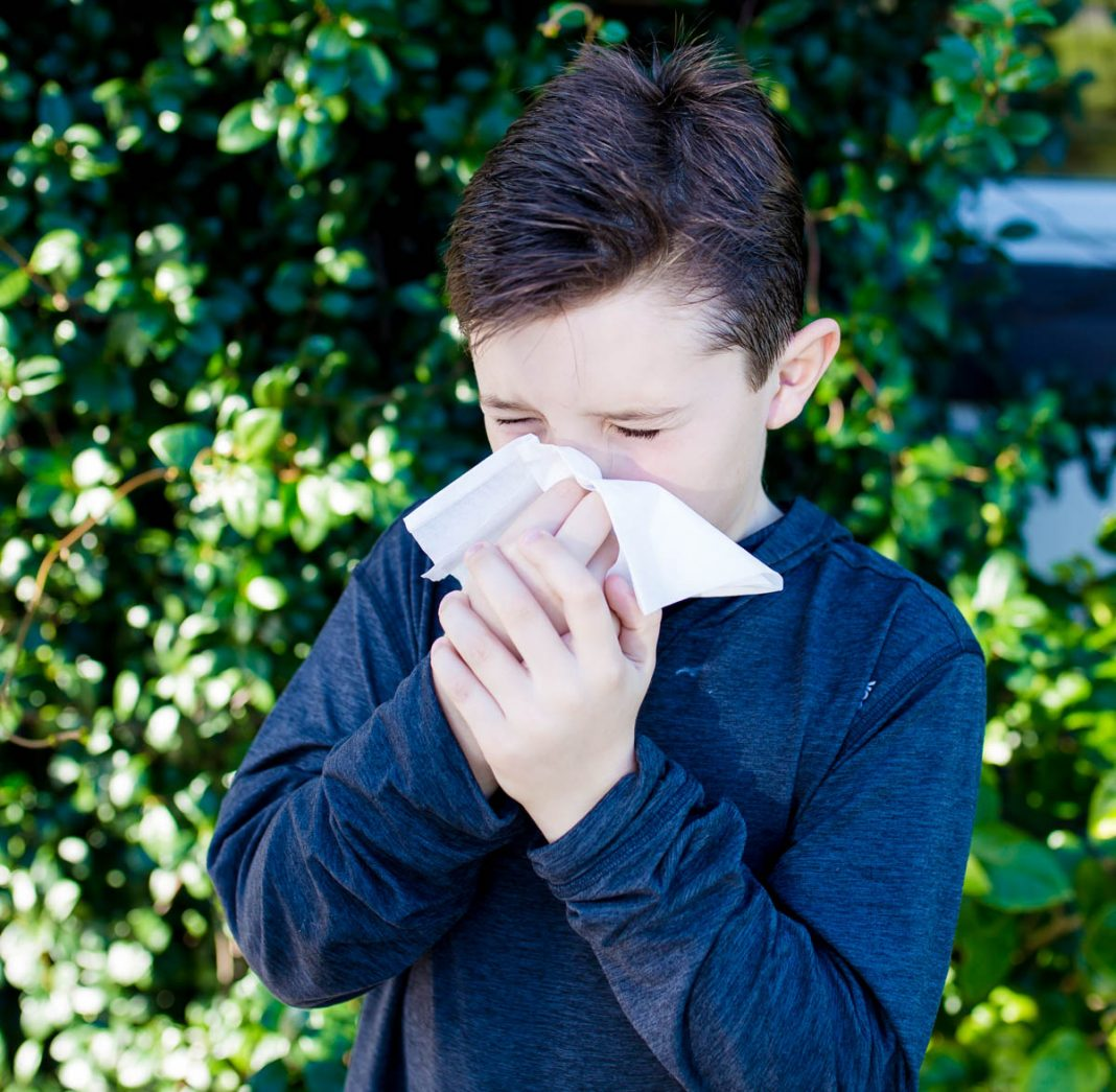 Allergies And Naet Testing: Is It Right For You