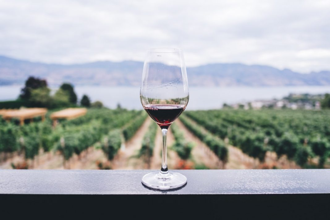 Picking The Right Cabernet Sauvignon For You
