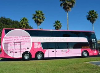 Book With Megabus And Help Fight Breast Cancer
