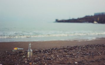 Help Eliminate Plastic In The Ocean With These Products