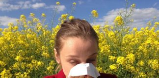 Everything You Ever Wanted To Know About Seasonal Allergies